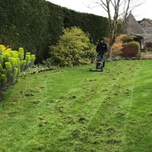 Scarification weed killing - Greenway Lawn Services
