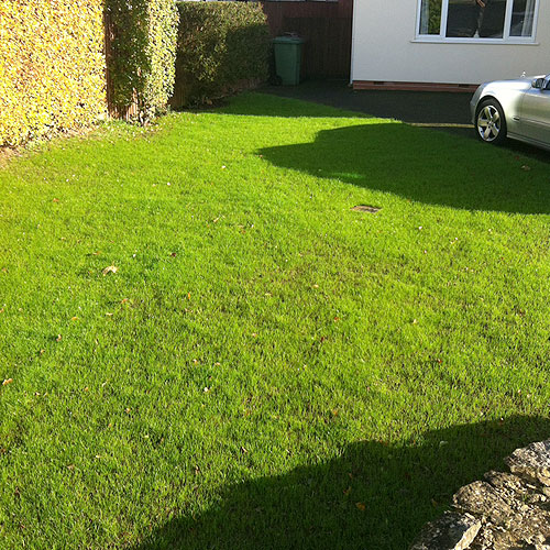 top dressing lawns greenway lawn services. Black Bedroom Furniture Sets. Home Design Ideas